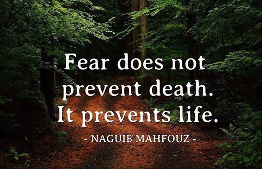 fear does not prevent death, it prevents life